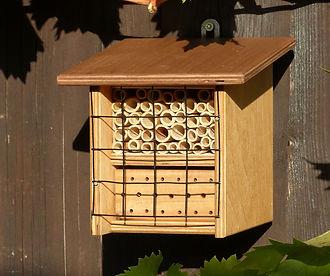 BeeFriend Mini-neu.jpg