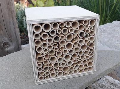 BeeFriend_8.jpg