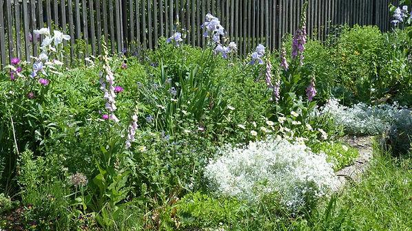 Naturschutz_Blumenbeete.jpg