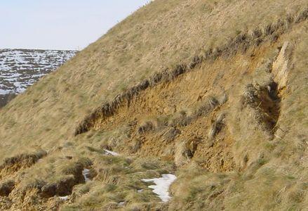 Steilwand_1.jpg