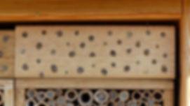 BeeFriend_9.jpg