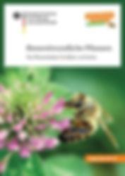 Bienenlexikon.jpg