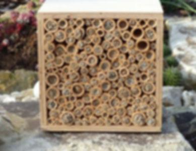 BeeFriend_6.jpg