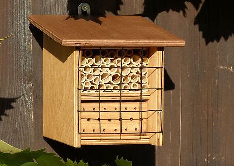 BeeFriend Mini-neu1.jpg