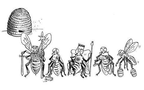 Wildbienen_Bienenstaat.jpg