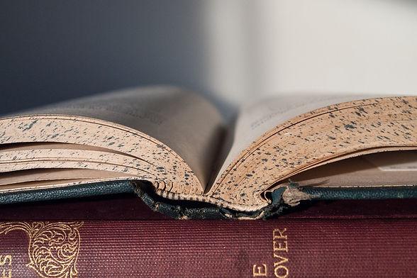 book-856151_1920.jpg