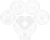 HSII%2520Icon_edited_edited.png