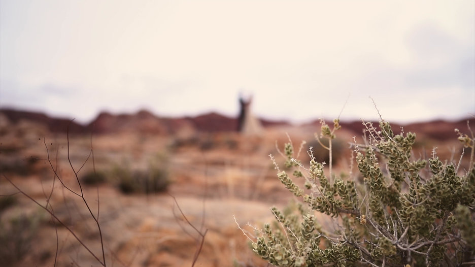 Valley of Fire Elopement | Video by Millennium Moments