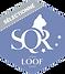 logo-SQR-N3.png