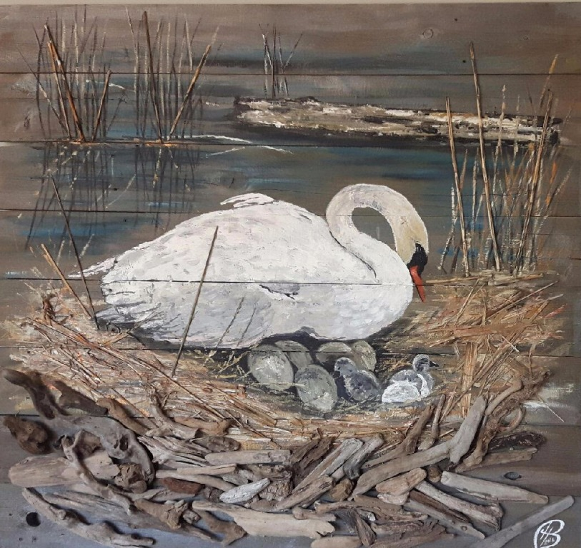 Bayfront Muted Swans