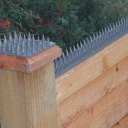 Tip Top Fence Spikes 450mm x 50mm (Individual)