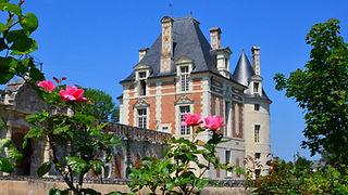 chateau-selles-sur-cher-playmobil.jpg