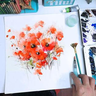 Poppies Study
