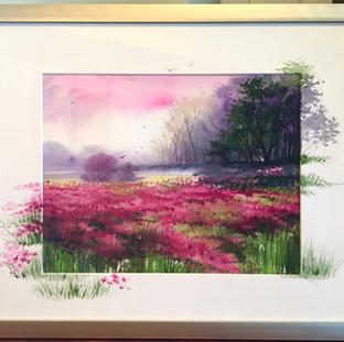 Fields with Flowers