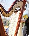 Harp%20with%20Couple_edited.jpg
