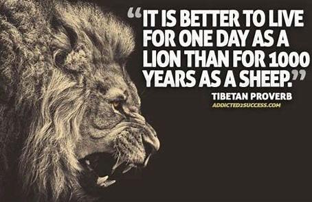 Be a Lion. Not a Sheep. Not a Lamb.