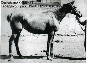 Семейство Киевитт Kiewitt 268 Теберда 55