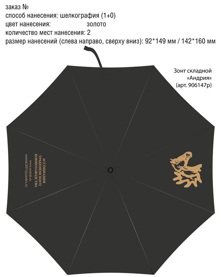 Зонт атк (4).jpg