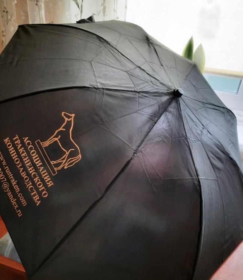 Зонт атк (1).jpg