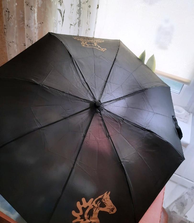 Зонт атк (2).jpg