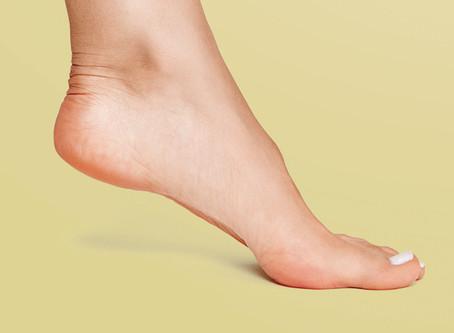 Anatomia do Pé: Formação do pé humano