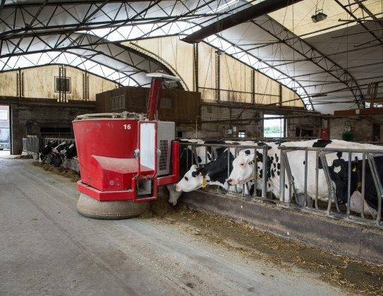 005_boerderij-image-1570803