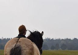 incredible refelction in en outdoortraining en coaching met honden of management  en leaderships traingingen of kiest u voor mindsonar denkstijlen met  koeien en honden wolven en paarden