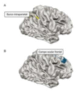 Figura 23.jpg
