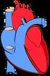 human-heart-1700453_960_720.png