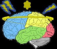 Cerebro-300x257.png