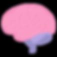 5868497c009323a44151a21a6abe7b51-cerebro