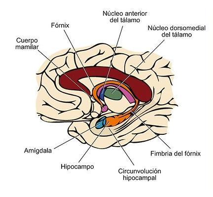 figura 12.jpg