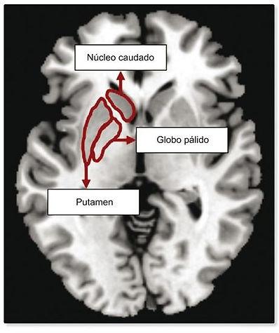 Figura 9.jpg