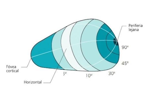 fig 3.jpg