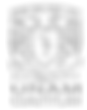logo_fesc (1).png