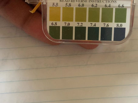 How and Why to Check Your Bodies pH Levels