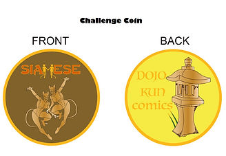 Challenge Coin as a Stretch Goal.jpg