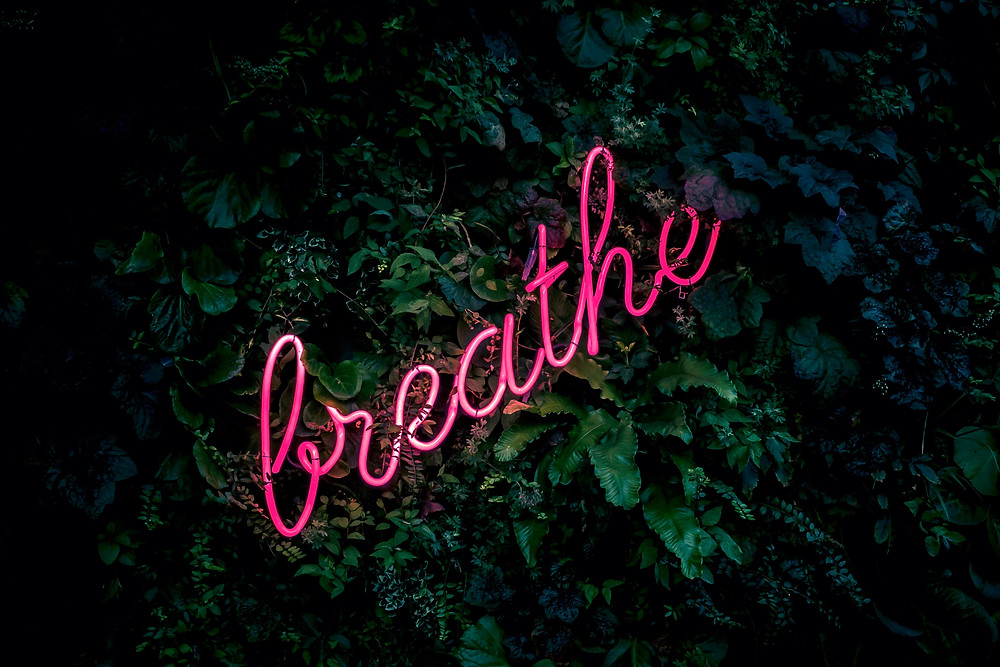 The text breathe in pink neon on a leafy background reminding us to breathe as we practice mindfulness in Denver CO. We can help you learn mindfulness through stress management treatment at Catalyss Counseling in Englewood CO 80209 and 80210