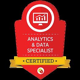 Analytics & Data Specialist.png