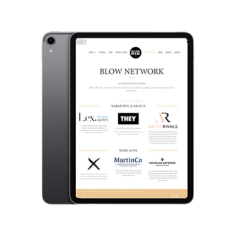 Blow Network.png