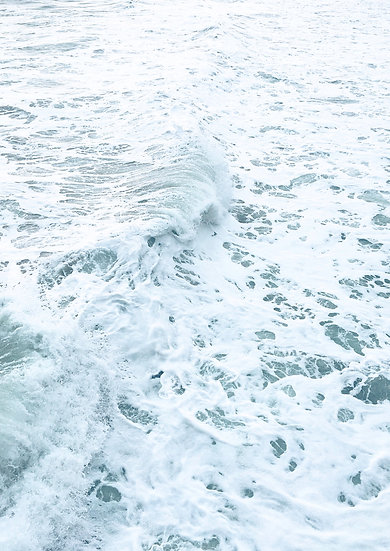 Gold Sea 8