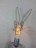 Bunny est un génie