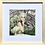 Thumbnail: Jardin des tuileries