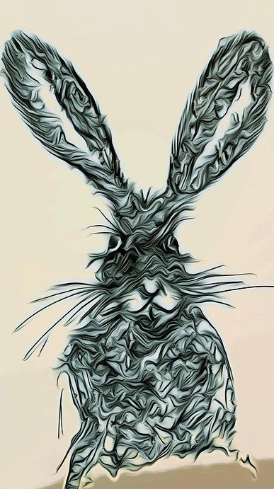 Hare Today Betws Y Coed