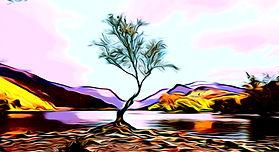 Lone Tree Llyn Padarn Llanberis