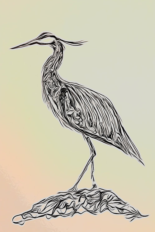 Betws Heron Print size 8x 6 inches
