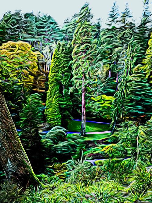 Bodnant Trees print 8 x 6 inches