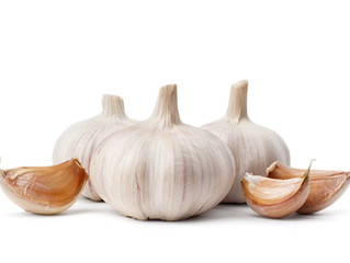 Garlic and Immunity
