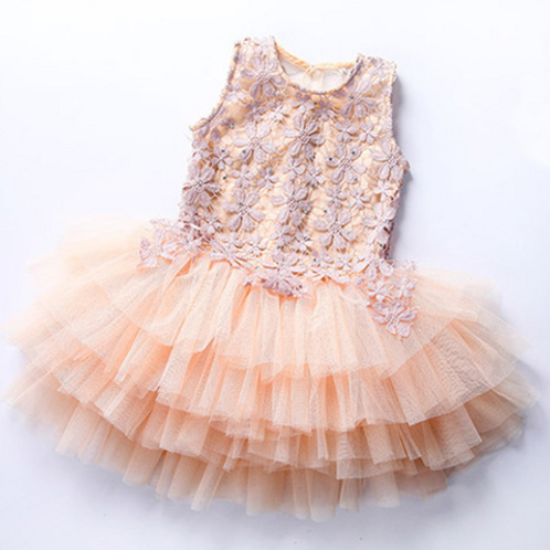 Lace & Flowers Blush Tutu Dress