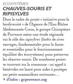 Avignon(s) n°19 - Septembre 2018